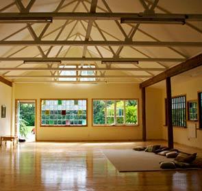 Lotus Yoga Studio - Carpet and Pillows Setup