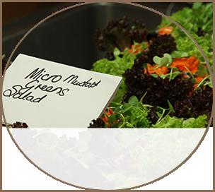 Greens Salad - Dinner Menu Sample