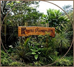 Kawai Purapura Sign