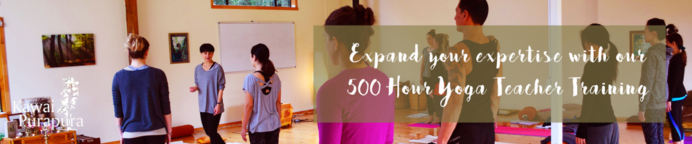 yoga-teacher-training-500hour-auckland-february-2018-kawai-purapura